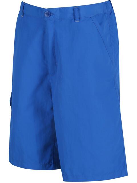 Regatta Sorcer korte broek Kinderen blauw